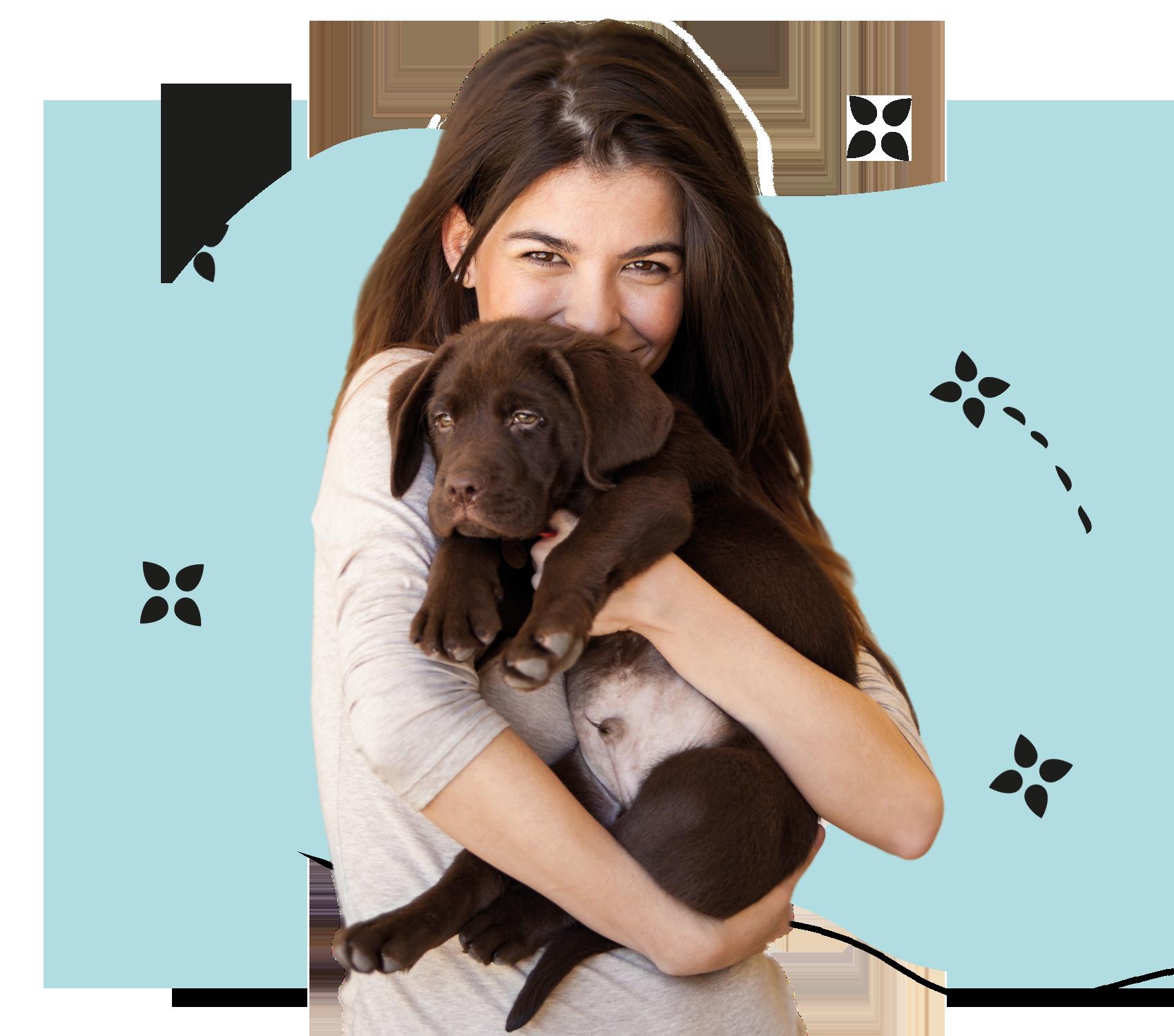 Hundefriseur Ausbildung